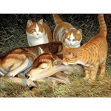 Mosaico Cuadros Bordado Daimond Pintura Animales Diamante Bordado Gato