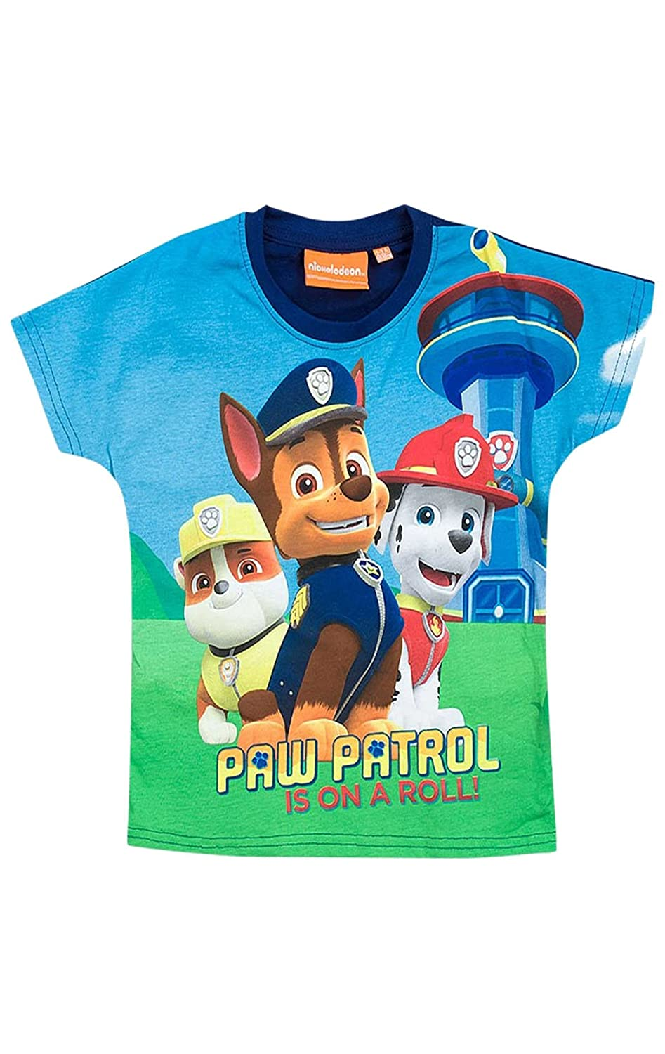 Boys Girls Official Paw Patrol Tshirt Top Age 3 to 8 Years: Amazon.co.uk:  Clothing