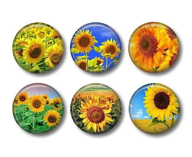 sunflower magnets fridge magnets flower magnets sunflower kitchen 6 magnets 15 - Sunflower Kitchen