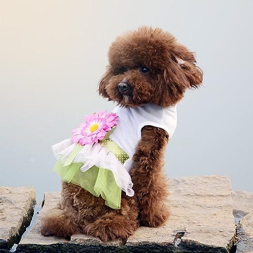 Amazon.com : eDealMax Vestido de perro Margarita gasa gato del Animal doméstico de la Princesa Falda del tutú del Bowknot de la ropa del Verano del Traje ...