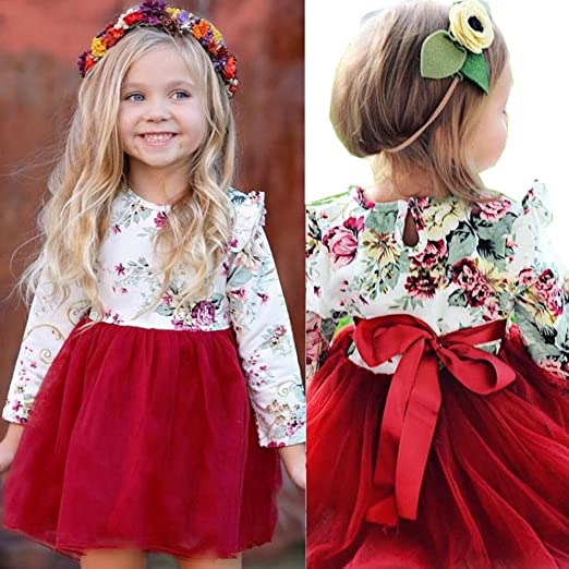 39fd8d0e4ed01 Franterd Lace Princess Dress for Baby Girl,Toddler Kid Cute Long Sleeve  Floral Tulle Tutu Dress Outfits