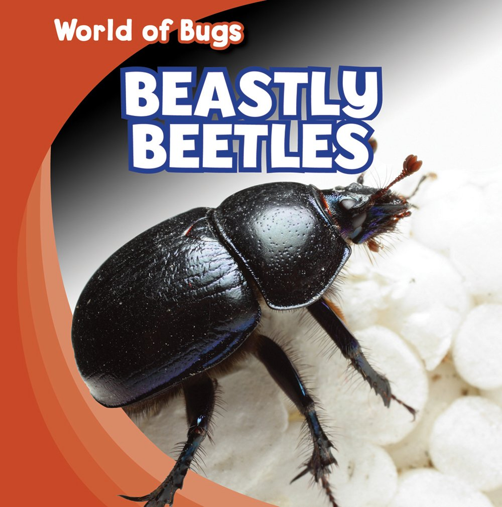 Read Online Beastly Beetles (World of Bugs) ebook