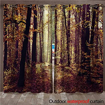 Amazon Com Forest Door Gazebo Curtain Mysterious
