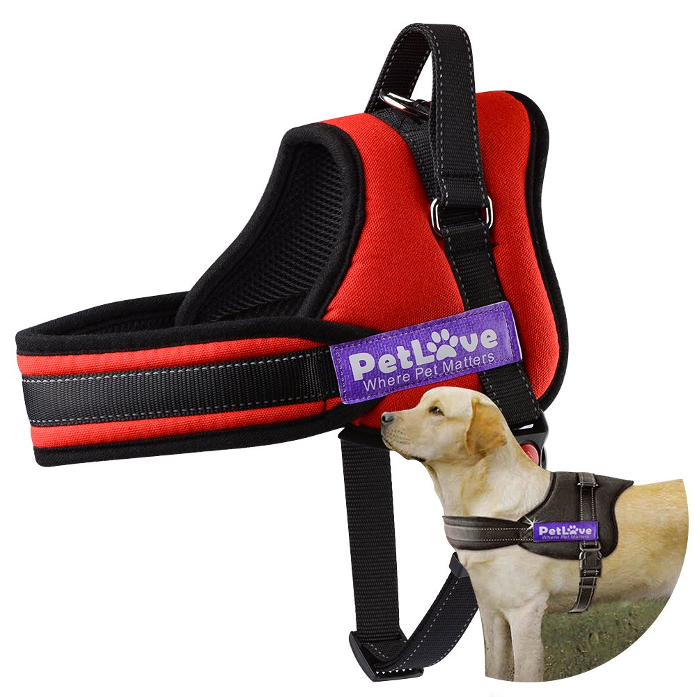 PetLove Dog Harness, Soft Leash Padded No Pull Dog Harness with All Kinds of Size - Red, Large