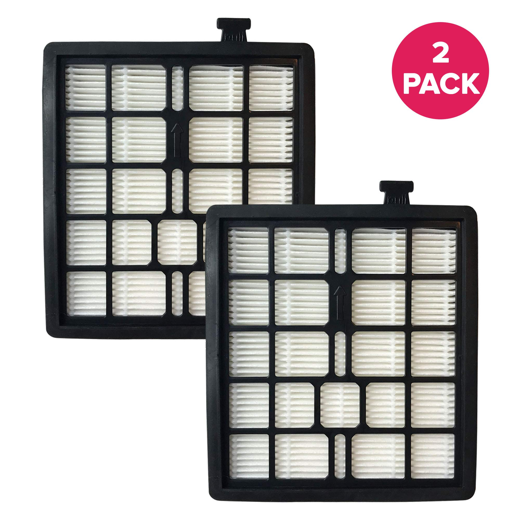 Crucial Vacuum Replacement Vacuum Filter Compatible with Dirt Devil Vacs - Part F45 - Fits Models Pets Canister SD40000, EZ Lite Canister SD40010, Parts 2KQ0107000 2-KQ0107-000 F45 F-45 Bulk (2-Pack)