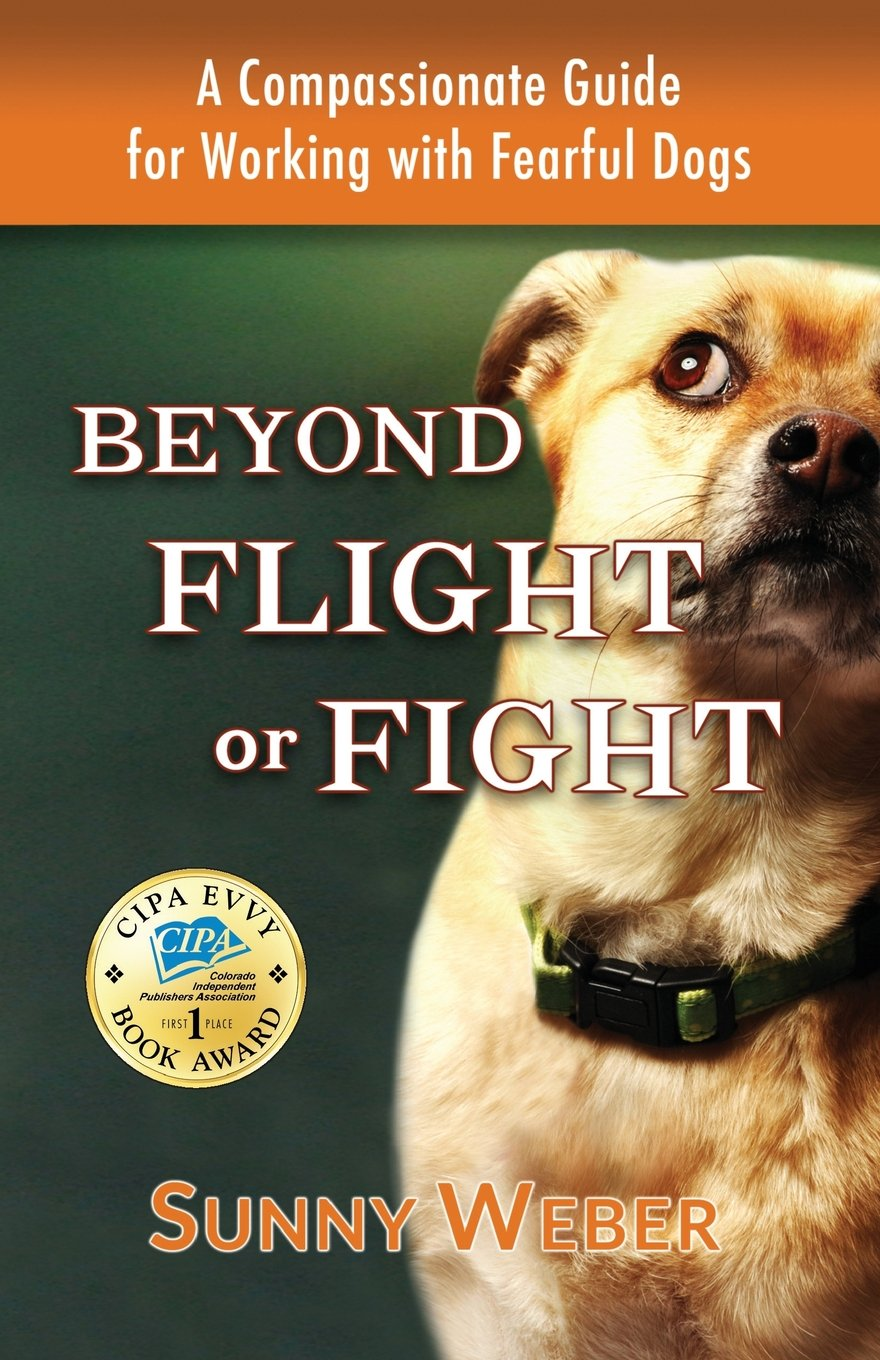 Beyond Flight Fight Compassionate Working