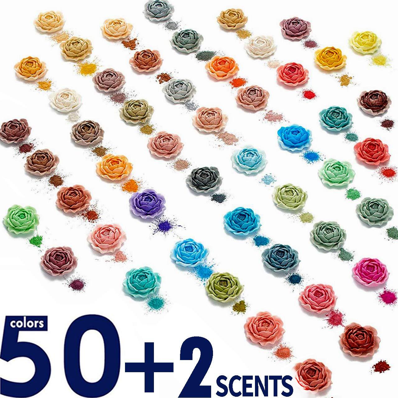 Mica Powder - Soap Making Kit - Powdered Pigments Set - Soap Making dye - 50 Coloring - Hand Soap Making Supplies - Resin Dye - Mica Powder Organic for Soap Molds