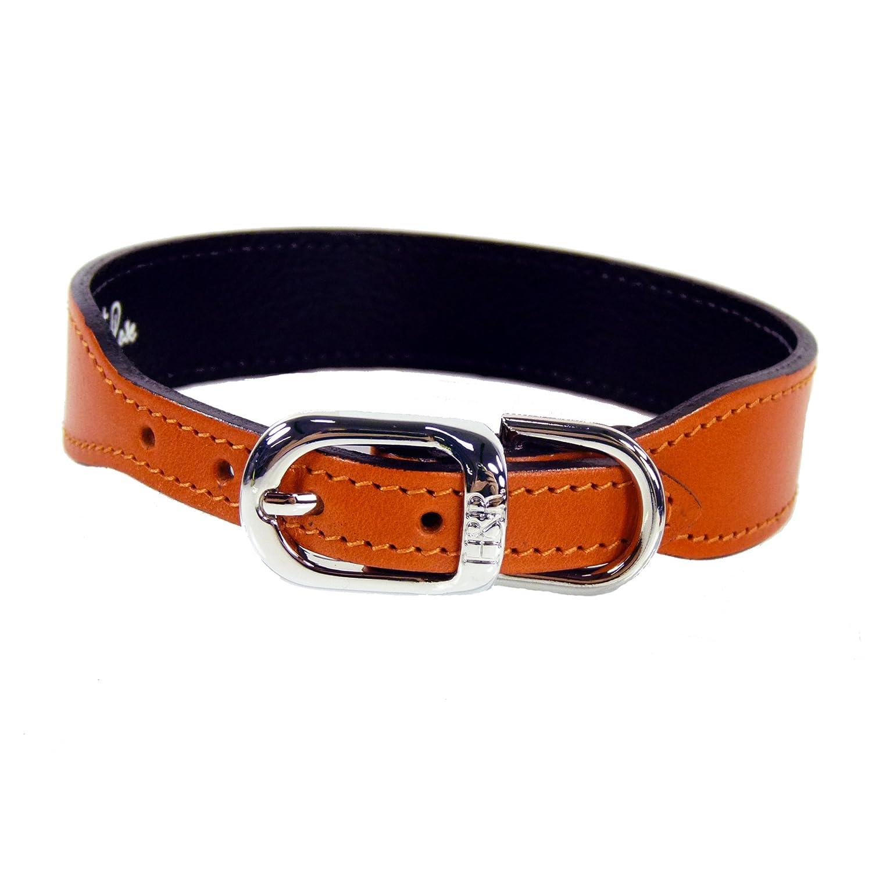 Hartman & pink 1420 Plain Nickel Plated Dog Collar, 22 to 24-Inch, orange