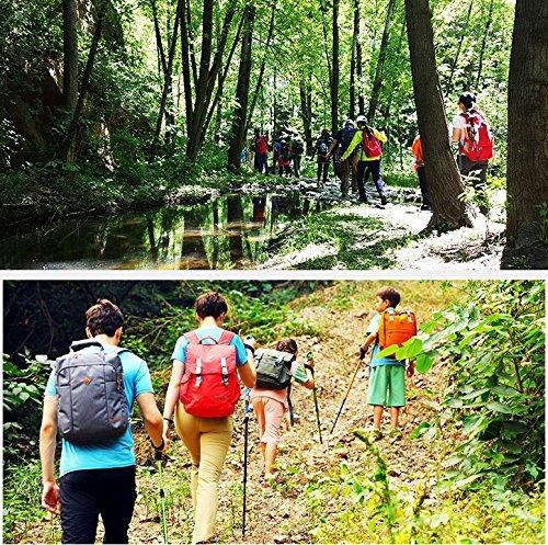 KingCamp Ultralight Three Section Carbon Fiber Anti Shock Hiking Trekking Walking Trail Poles, 2 pack