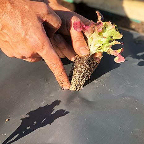 NovaMulch, Malla antihierbas de Papel Biodegradable 60cm x 10m ...