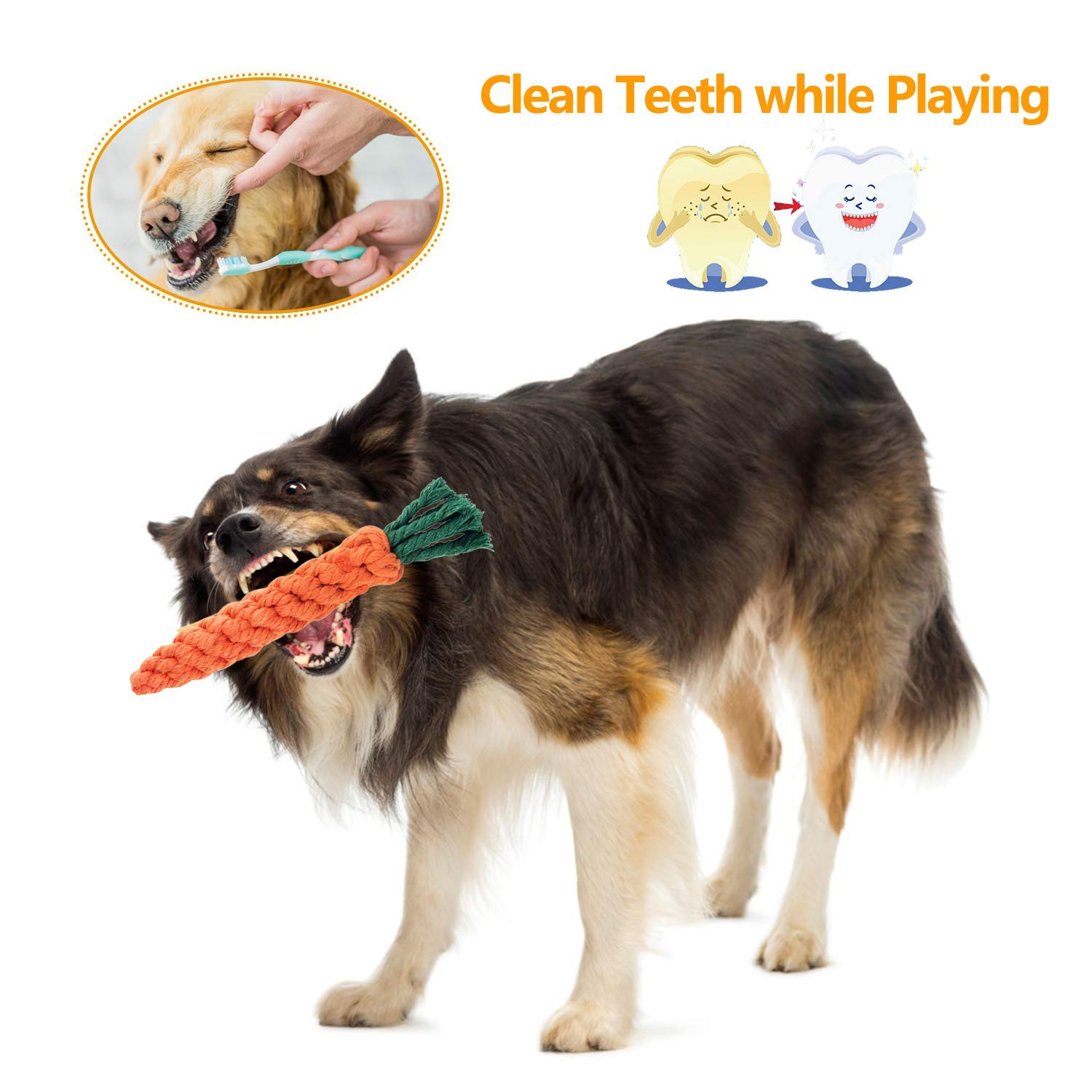 Puppy Chew Toys - 5 PCS Puppy Rope Toys Set, Puppy Chew Durable Interactive Cotton Toys Dental Health Teeth Cleaning (5 Pack)