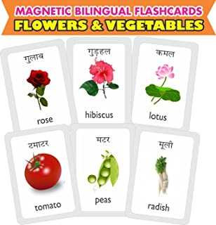 Buy Mfm Toys Fruits And Dry Fruits Bilingual Hindi English