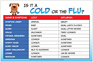 Flu vs Cold Poster - Flu Poster - Health Office Decorations - Health Posters for School Nurse Office - School Health Posters - Signs of The Flu - 12 x 18 inches - Laminated