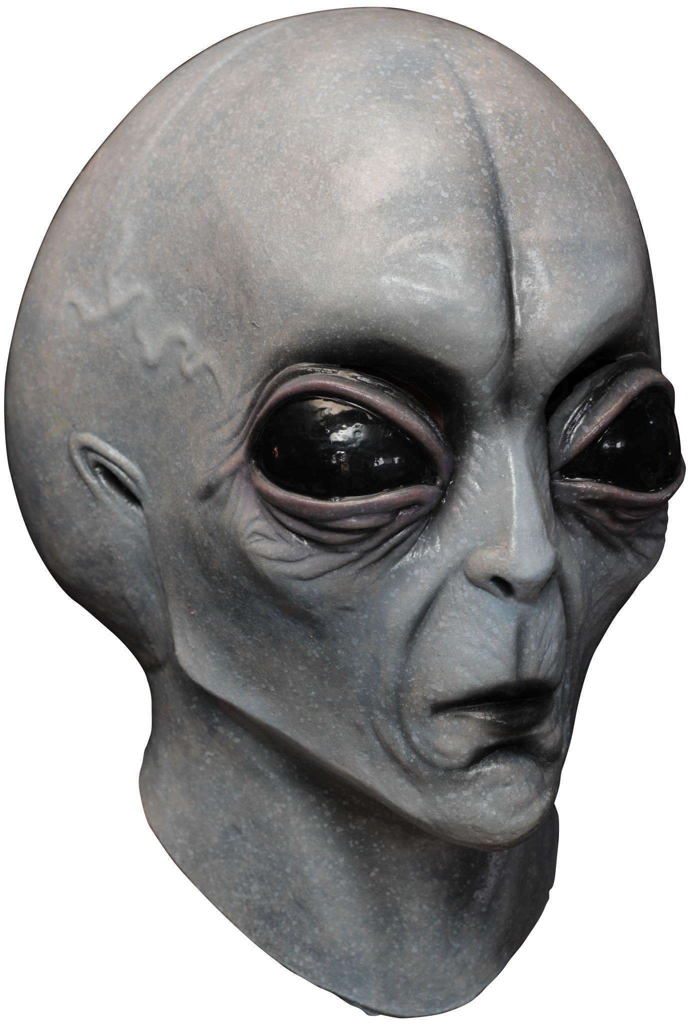 Area 51 Alien Mask Halloween Costume Accessory, One Size, Grey, Size One Size