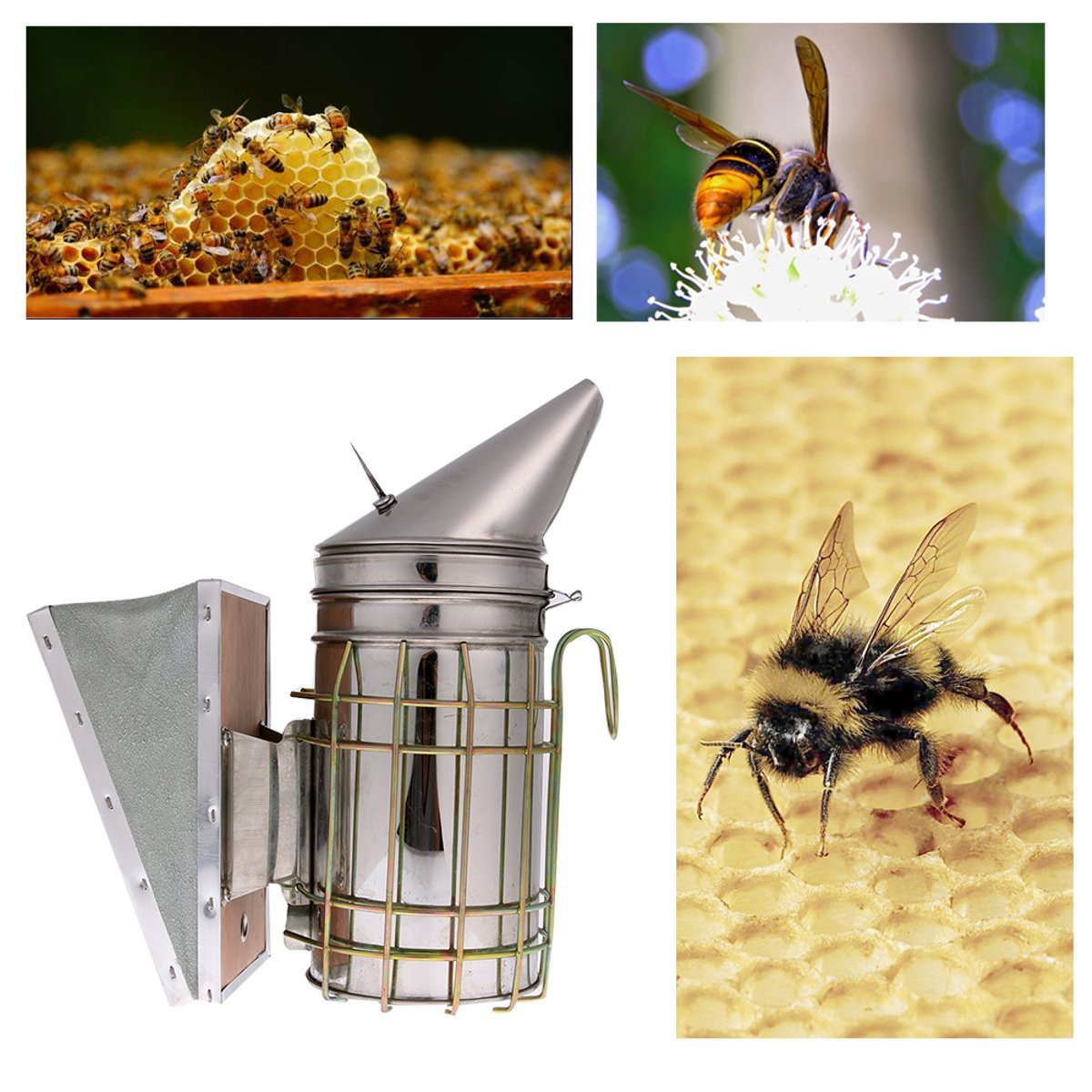 Tacoli Durable Bee Keeping Smoker Stainless Steel Bee Hive Smoker Small Galvanized with Heat Shield Board Beekeeping Equipment tool