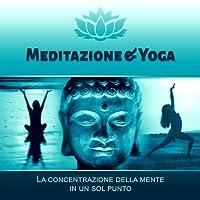 Meditazione & Yoga (La concentrazione della mente in un sol punto - Musica rilassante New Age, Suoni della natura, Flauto nativo)