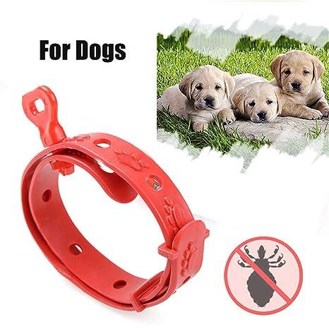 bleumoo rojo plástico perro gato cuello anti pulgas garrapatas mosquitos eliminación pulgas mascotas cuello collar (