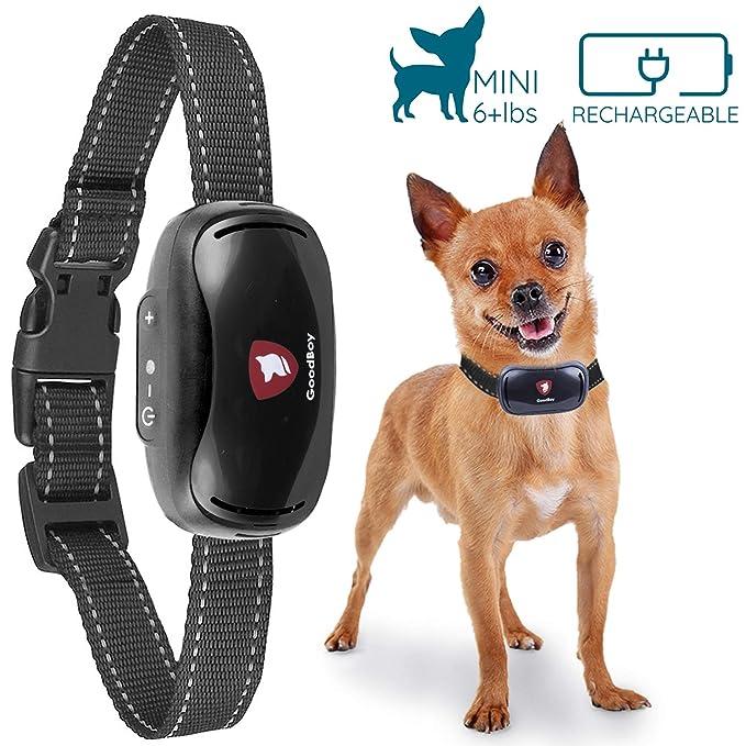 6 opinioni per GoodBoy Collare Gentile Antiabbaio per Cani Piccoli – Dispositivo Antiabbaio A