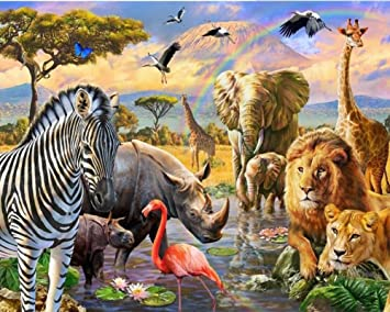Rainbow Animal World Lion Tiger Elephant Flamingos 16x20 inch Wowdecor Paint by Numbers Kits for Adults Kids Number Painting Framed