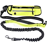 Hands Free Dog Leash by Lennystone - Adjustable Leash and Belt for Running and Walking with Retractable Reflective Bungee cord and Pockets
