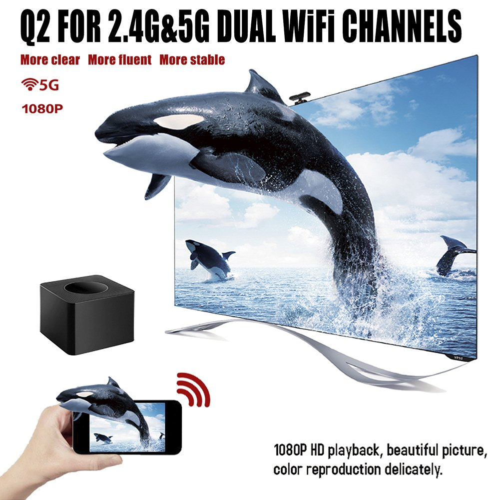 WiFi Display Dongle,WiFi Portable 5G Gen HD 1080P Screen Mirroring Plug and Play Adapter HDMI & AV Dual Video WiFi Receiver, Receiver for iOS iPhone iPad/Android Smartphones/ Windows/ Macbook by floor88