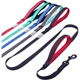 Vivaglory Dog Leash Traffic Padded Two Handles, Heavy Duty Reflective Leashes for Control Safety Training, Walking Lead…