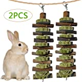 Bunny Chew Toys for Teeth Grinding, Chinchilla Treats Organic Bamboo Sticks Natural Apple Wood Branches for Rabbits…