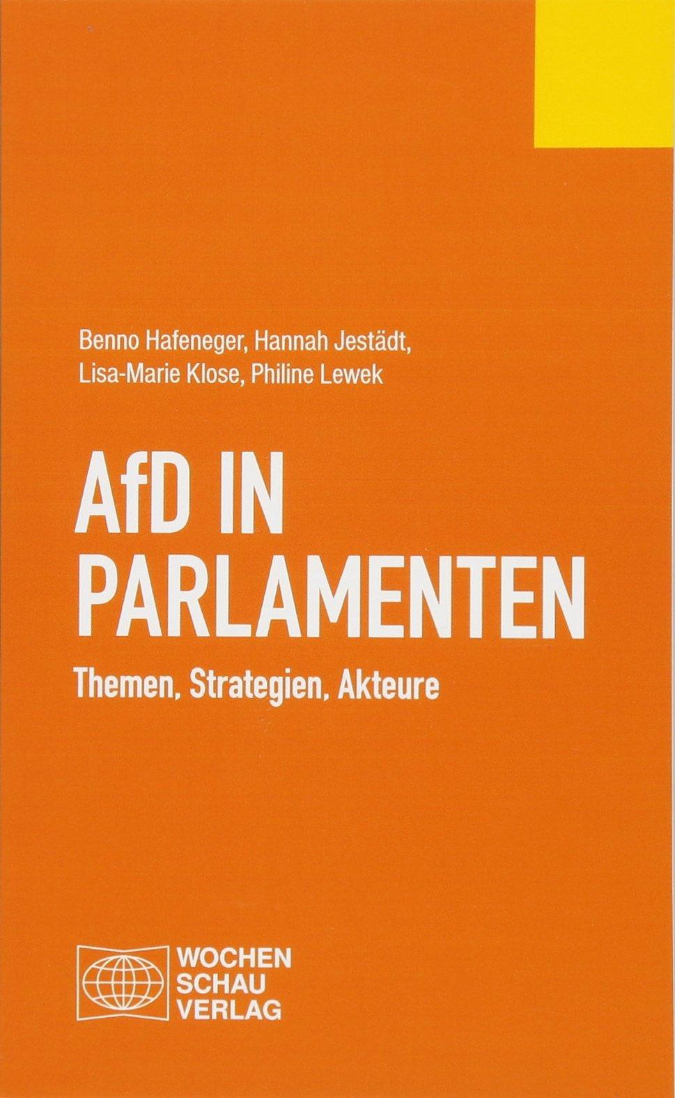 AfD in Parlamenten: Themen, Strategien, Akteure Taschenbuch – 1. März 2018 Benno Hafeneger Hannah Jestädt Lisa-Marie Klose Philine Lewek