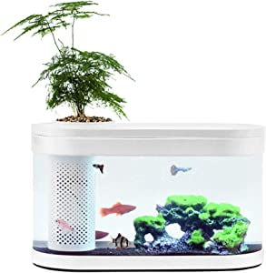 Sheebo 2.5 Gallon Modern Aquarium Kit, Small Fish Tank with LED Light, Filtration System Quiet Water Pump Small Plant Decor for Betta Fish and Various Fish