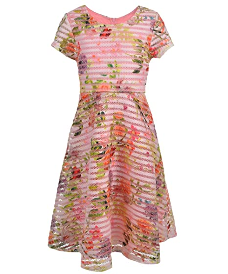 6c58c746548 Bonnie Jean Big Girls Plus Size Pink Floral Mesh and Striped Jacquard Fit  Flare Social Dress