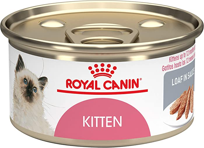 Top 10 Huge Refilling Cat Food Bowl