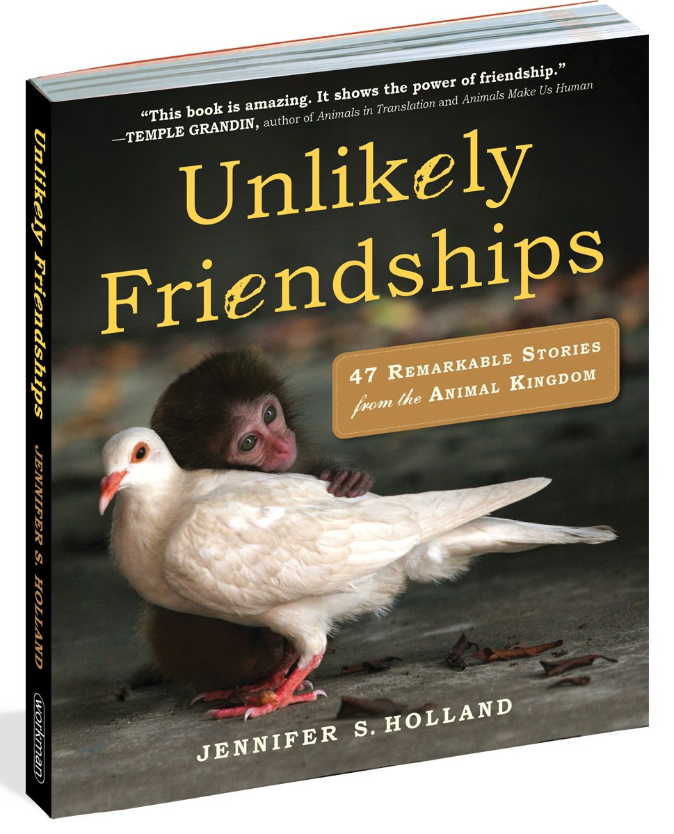 Image of: Interspecies Unlikely Friendships 47 True Stories Of Animal Friendship Paperback Jul 2011 She Scribes Unlikely Friendships 47 True Stories Of Animal Friendship Amazon