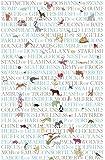 "MollyMac ANIMAL COLLECTIVE NOUNS TEA TOWEL Cute Kitchen Home Decor Collective Nouns Dish Cloth Thank you Gift, Present for English Teacher, Birthday, Christmas UK Made 100% Cotton 71x46cm 28""x18"""
