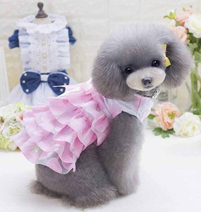 Extra Small, Pink Pet Girl Dog or Cat Frilly Pink Girly Princess Fancy Dress Costume Outfit Small Dog Clothes Clothing XS-XL Dresses