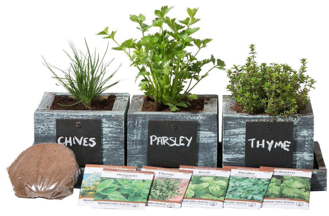 Herb Garden Planter by Planter Pro's - Complete Herb Garden Kit - Indoor Garden Seeds Growing Kit - Grow Cooking Herbs Basil, Chives, Oregano, Parsley & More - Cedar Wood Planter
