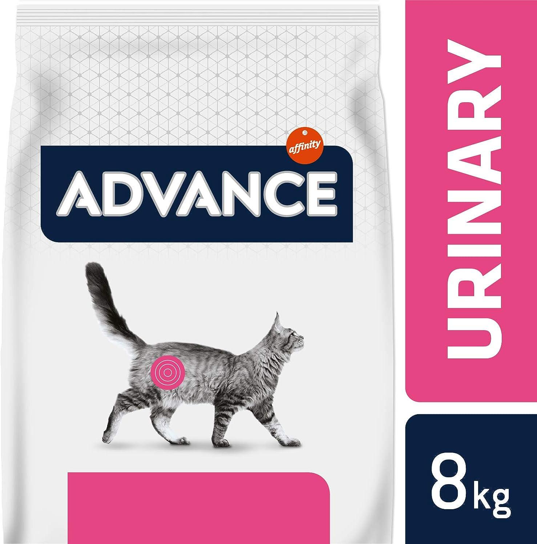 Advance Veterinary Diets Urinary Pienso para Gatos con Problemas Urinarios - 8kg: Amazon.es: Productos para mascotas