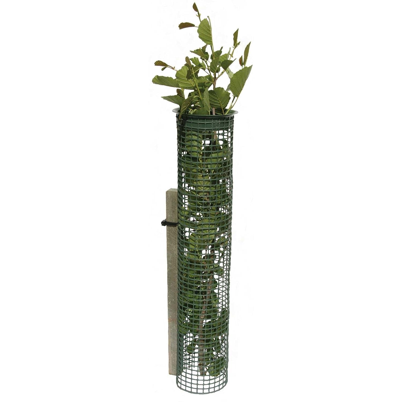 Tubex Treeguard Baumschutzgitter Röhre 1.8m Ø 80-110mm, grün, Stammschutz, Fege- und Verbissschutz (4)