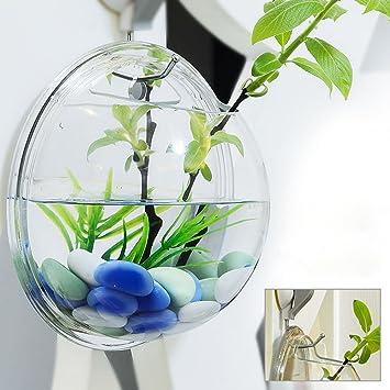Ganeep Decoración del hogar Plantas Transparentes Maceta Floreros Colgantes de Montaje de Pared Bubble Aquarium Bowl