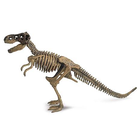 Cosas wow del Museo de Historia Natural Kit de Excavación Tyranosaurus Rex: Amazon.es: Juguetes y juegos