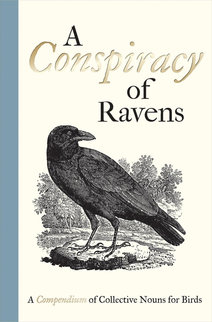A Conspiracy of Ravens: A Compendium of Collective Nouns for Birds by imusti