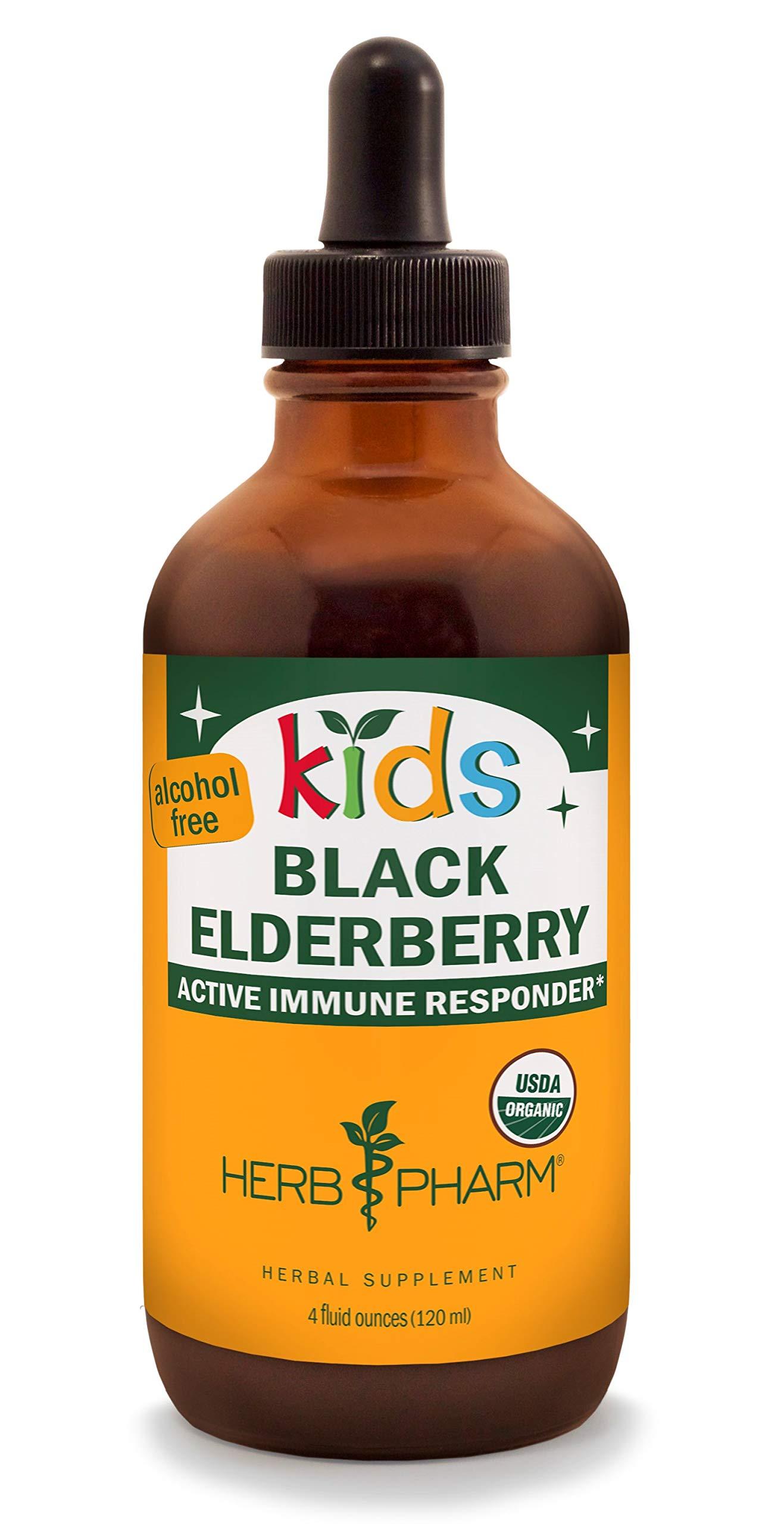 Herb Pharm Kids Certified-Organic Alcohol-Free Black Elderberry Glycerite Liquid Extract, 4 Ounce