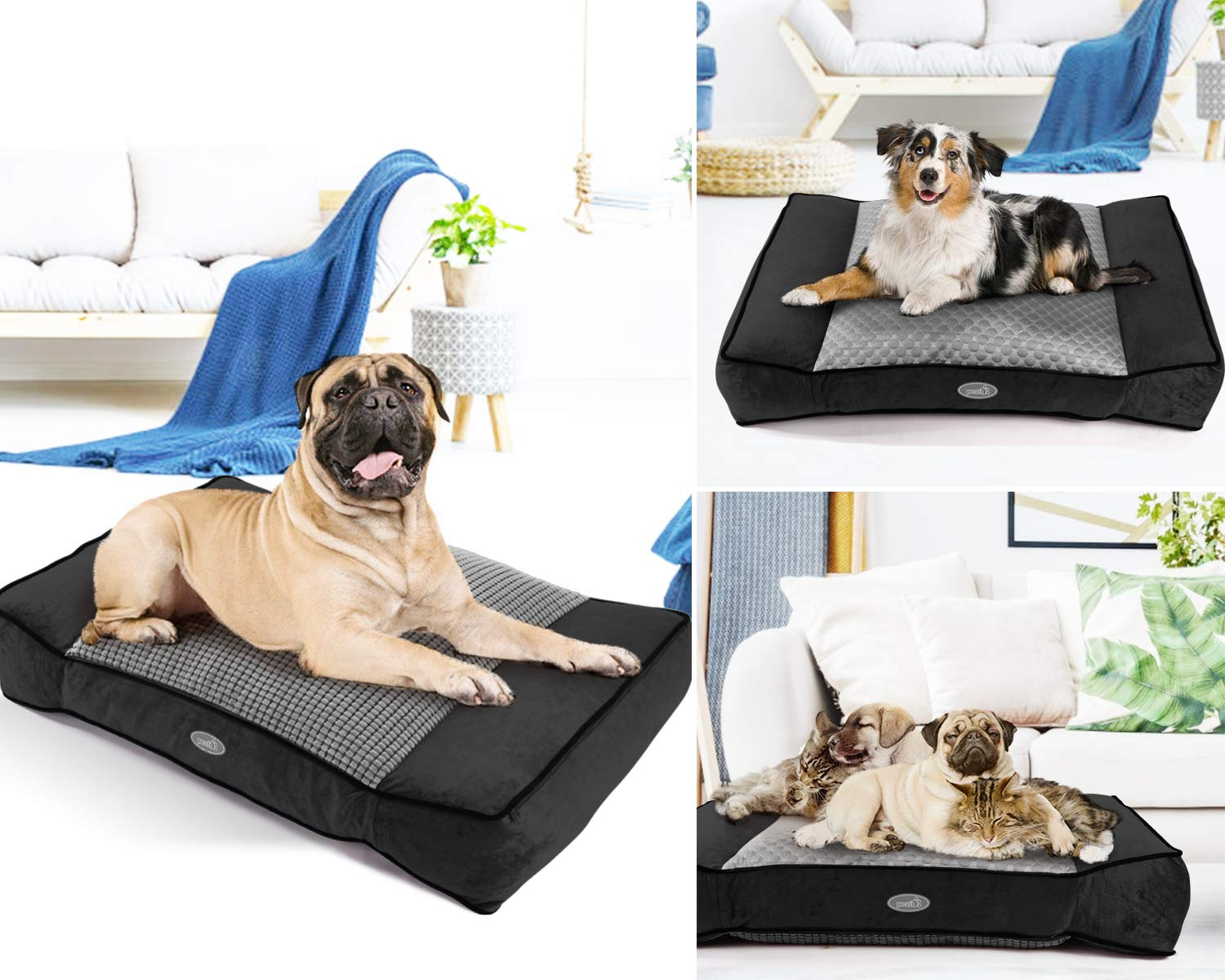Pecute Dog Bed, Warm Plush & Cool Silk Double-Sided Pet Bed Four Seasons Available, Orthopedic Memory Foam Care for Cervical Spine, Dog Lounge Bed Sofa with Removable Cover Washable (40x27 in, Black)