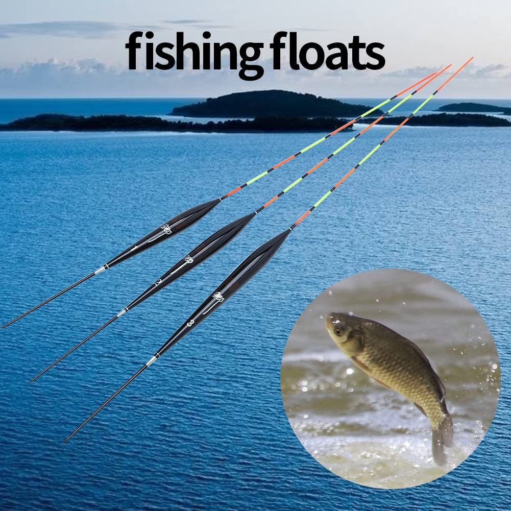 Dilwe Fischen schwimmt 3pcs Boje Holz vertikale Posen Set Angeln Bobbers Tackle Zubeh/ör