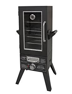 Smoke Hollow SH36GW Gas Smoker with Window, 36