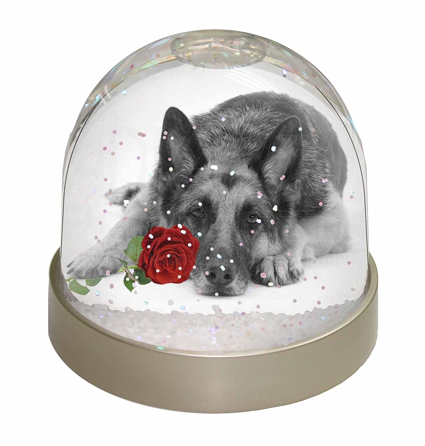 Advanta German Shepherd with Red Rose Photo Snow Globe Waterball Stocking Filler Gift, Multi-Colour, 9.2 x 9.2 x 8 cm Advanta Products AD-GS1R2GL