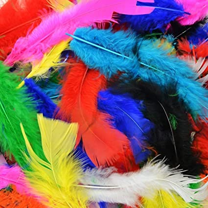 Amazon 300pcs Decor Featherscolorful Feathers For Diy Craft
