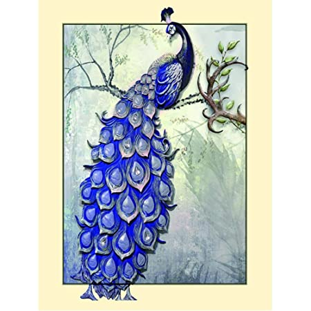 Amazon Com Fairylove 35 45 Diamond Painting Kits Flower