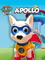 PAW PATROL Nickelodeon Paw Patrol New Pup Apollo New Paw Patrol Toy Video Reveal