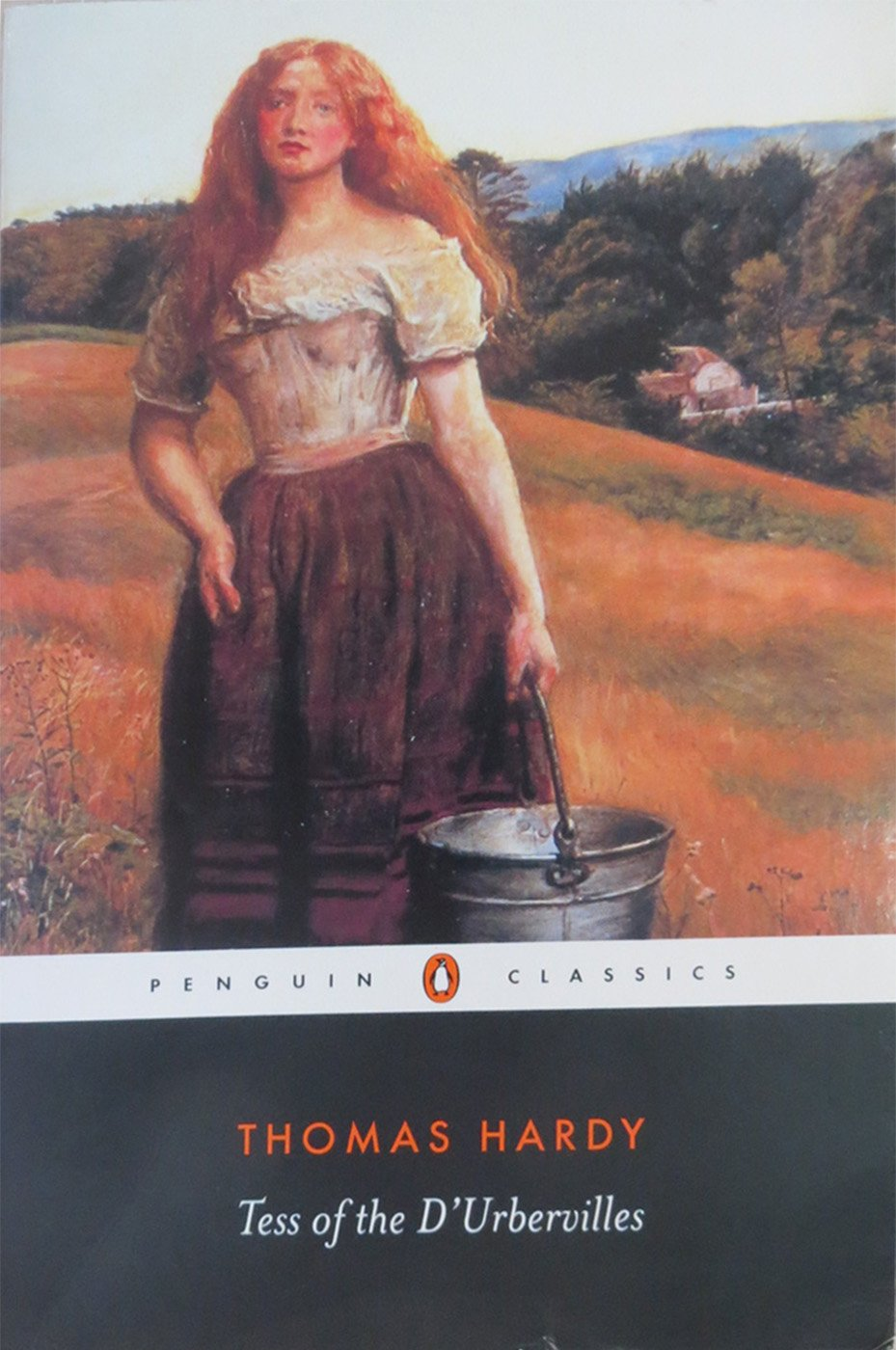 tess of the d urbervilles penguin classics thomas hardy tim tess of the d urbervilles penguin classics thomas hardy tim dolin margaret randolph higonnet 9780141439594 com books
