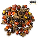 100 Pcs Artificial Acorns with Natural Acorn Cap, 2 Color Small Fake Acorns for Craft, Wedding, Festival Party and Home Decoration